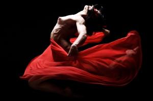 Flamenco_X6H0463